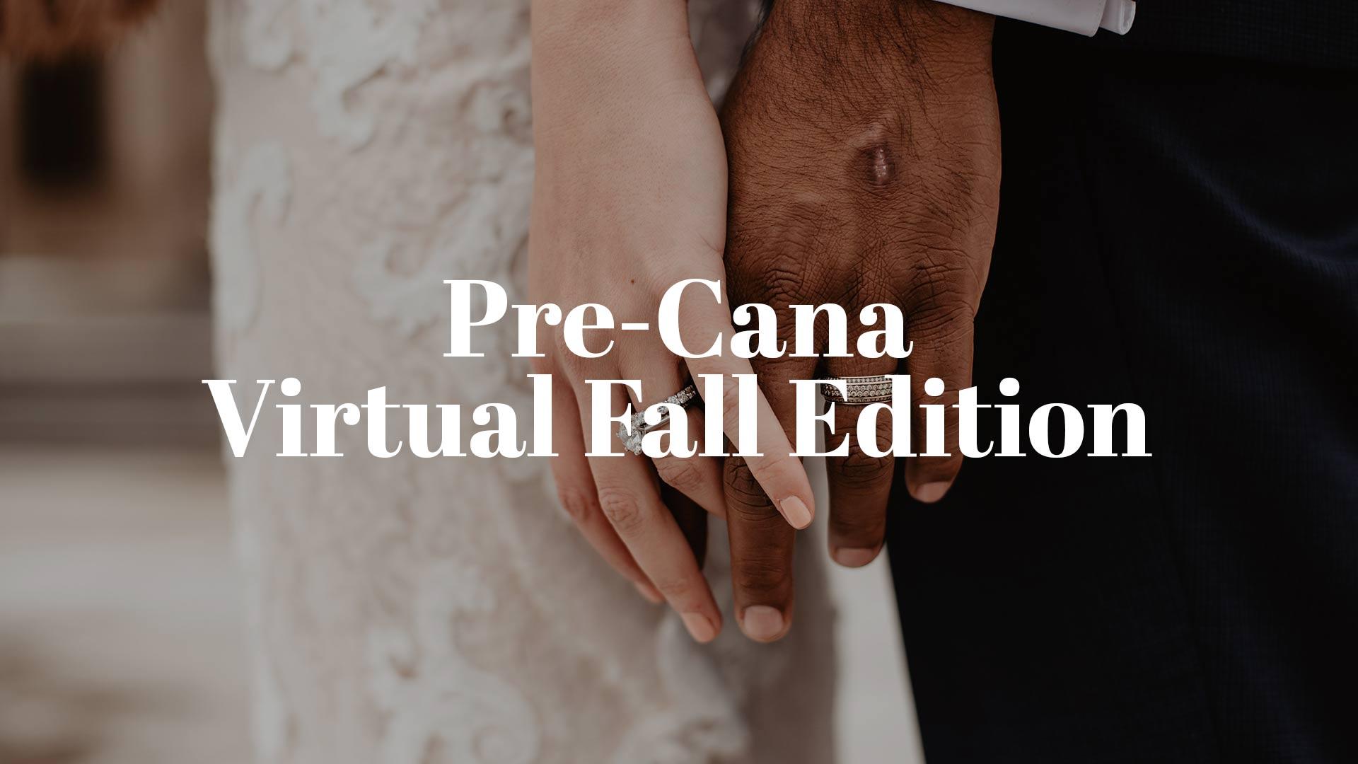 Pre-Cana Virtual Fall Edition